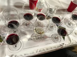 Syrah, Tempranillo, Bordeaux blend, YUM